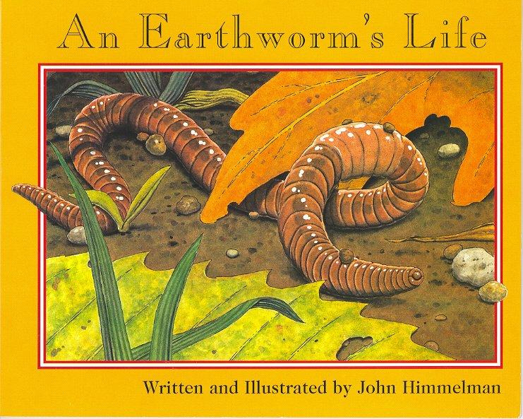 737An Earthworm's Life
