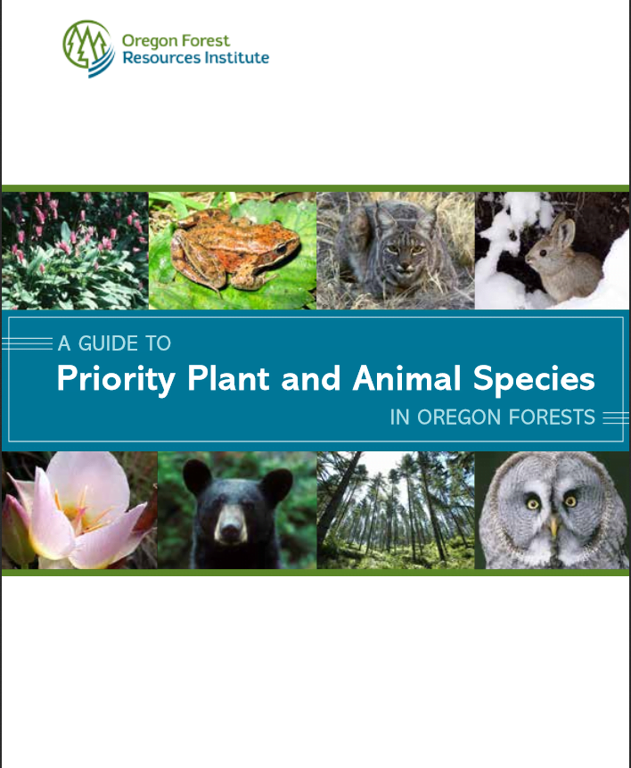 1038Identifying and Priority Plants & Animals and Their Habitats