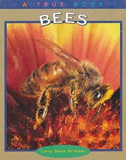 1142Bees - A True Book
