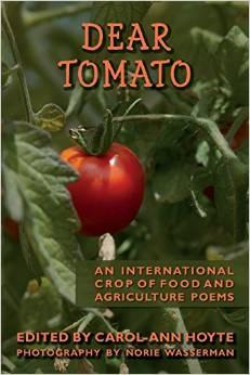 1066Dear Tomato