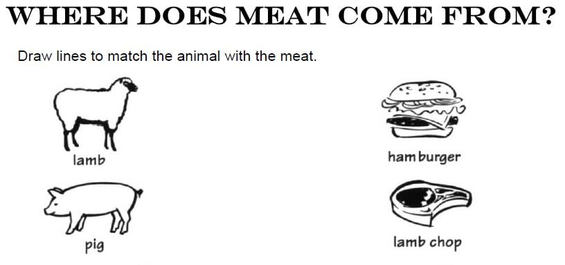 where does meat come from worksheet oregon agriculture in the classroom. Black Bedroom Furniture Sets. Home Design Ideas