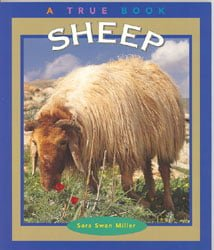 827Sheep - A True Book