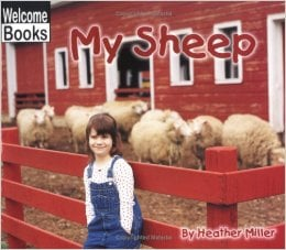 2138My Sheep - Welcome Books