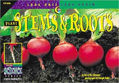 2206Plant Stems and Roots